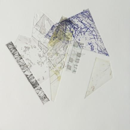 Rowan Siddons, Architectural Nature #25, 2017