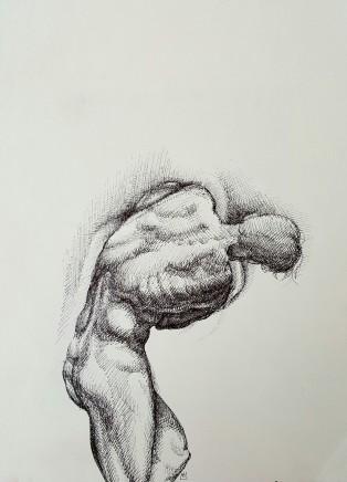 Armando Alemdar Ara, Struggle, 2016