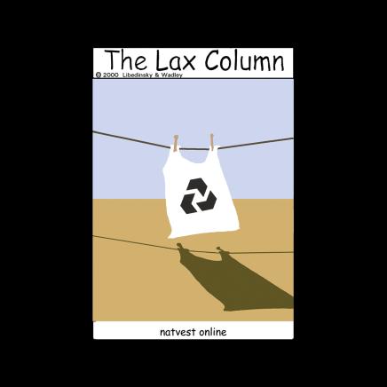 Sylvia Libedinsky, The Lax Column - natvest online