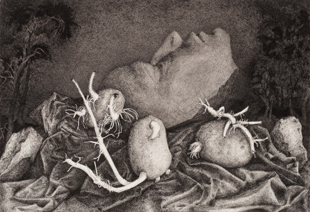 Claudine Roux, Roots, 2018