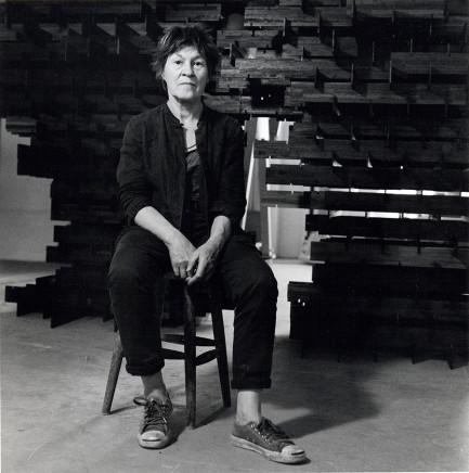 Lucinda Douglas-Menzies, Alison Wilding , 2013