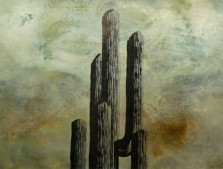 John Wilkins, Cactus 1