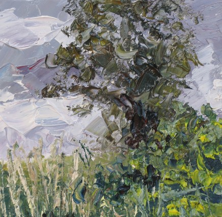 Colin Halliday, Summer Hedge, 2013-14