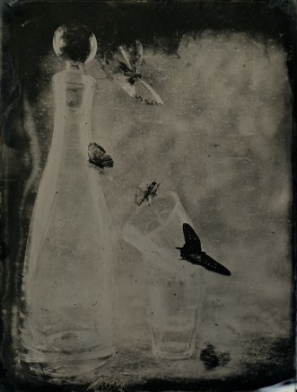 Nicolas Laborie, Butterfly IV