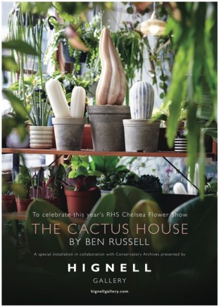 The Cactus House