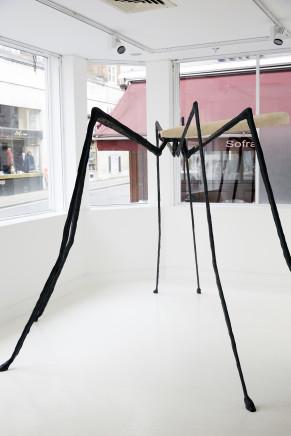 Vanessa Paschakarnis, Erdschnaken (Crane Flies) I-IV, 2015