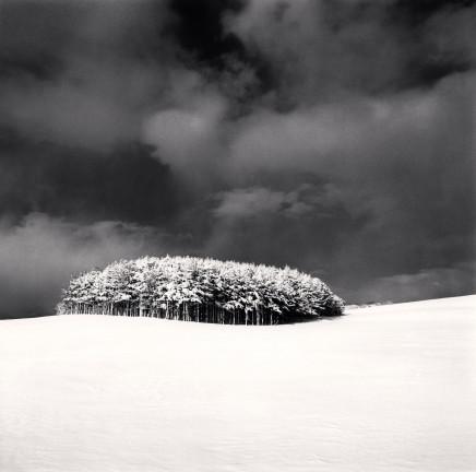 Michael Kenna, White Copse, Study 3, Wakkanai, Hokkaido, Japan, 2004