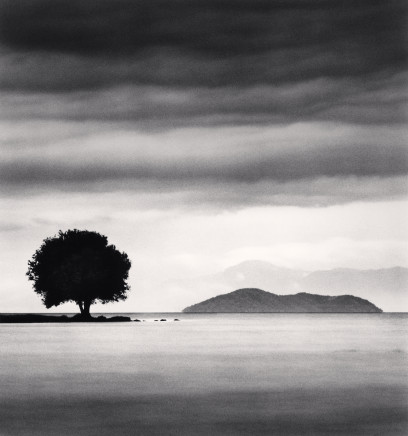Michael Kenna, Biwa Lake Tree, Study 4, Omi, Honshu, Japan, 2003