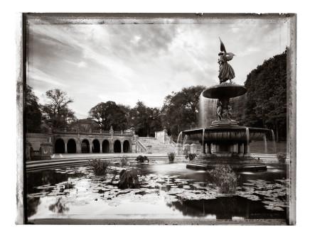 Christopher Thomas, Bethesda Fountain IV, 2009