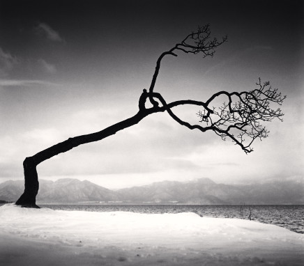 Michael Kenna, Kussharo Lake Tree, Study 16, Kotan, Hokkaido Japan, 2009