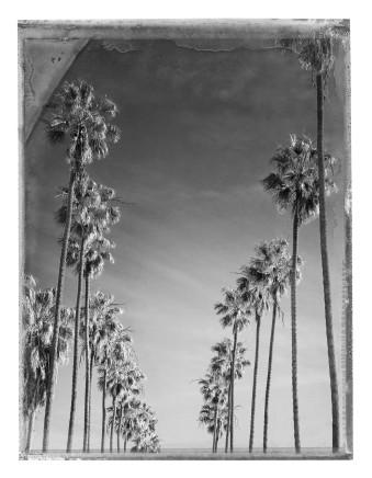 Christopher Thomas, Bay Street, Santa Monica, 2015