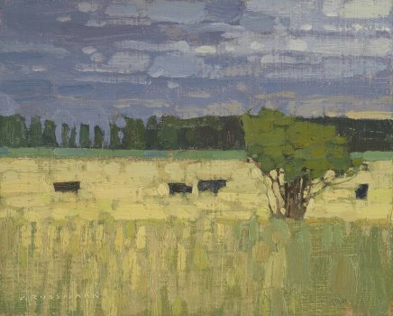 Pasture With Gathering Storm