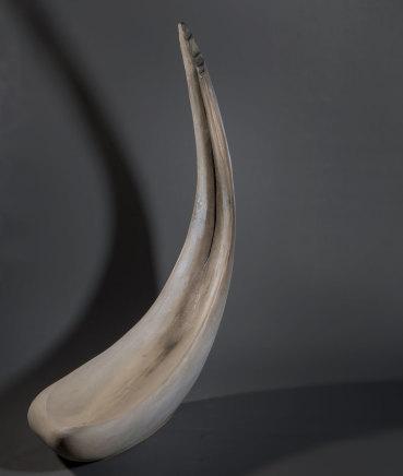Illona Morrice, Whale Bone (birdbath)