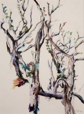 Patricia Cain rgi neac ps, Three Trees, Argyll, 2015