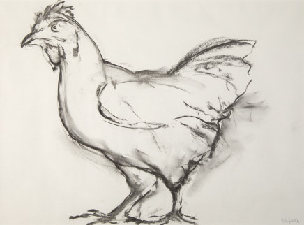Helen Denerley, Chicken Drawing, 2019