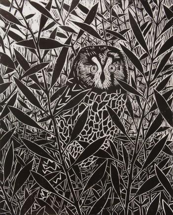 Paul Bloomer, Owl at Virkie