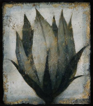 Peter White, Flower 10