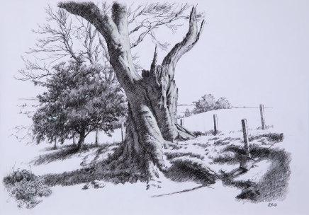 Paul Reid, Tree Study, 2018