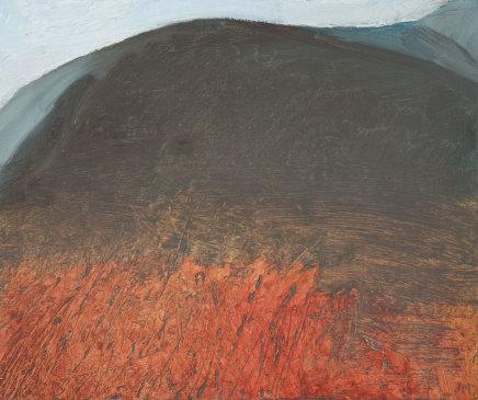 Jane MacNeill, Hillside in Shadow i