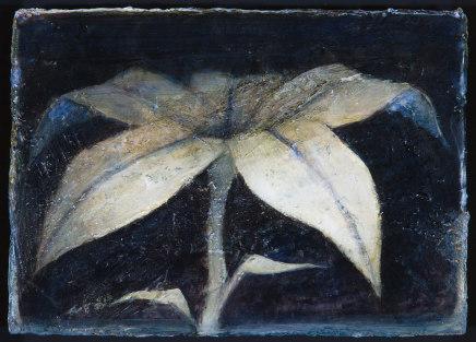Peter White, Flower i