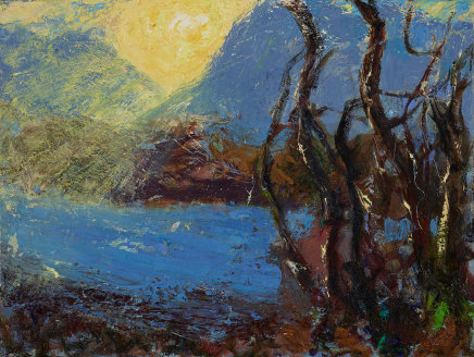 Allan MacDonald, black birches, Torridon, 2019