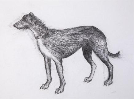 Helen Denerley, Dog Drawing, 2019