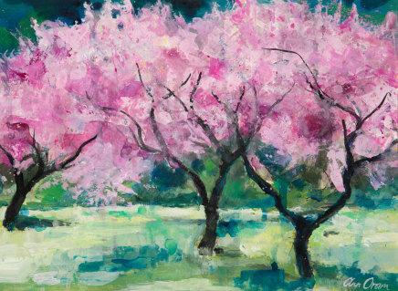 Ann Oram, Blossom Trees