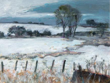 Ann Oram, Fields outside Greenlaw, Borders