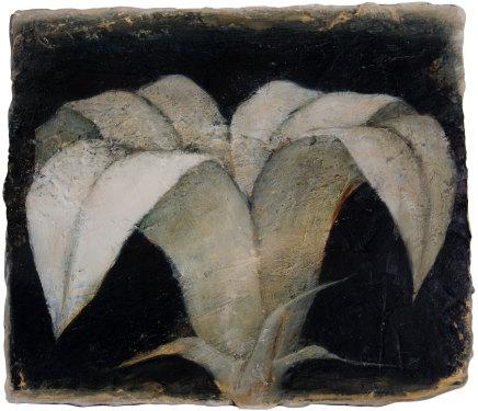 Peter White, Flower 2