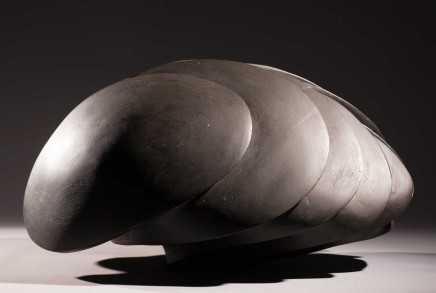 Steve Dilworth, Carapace maquette