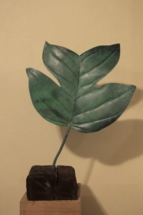 Barbara Edelstein 芭芭拉・愛德斯坦, Tulip leaf # 1, 2013