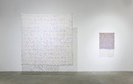 Zhang Xuerui 张雪瑞, Cotton print花布, 2012