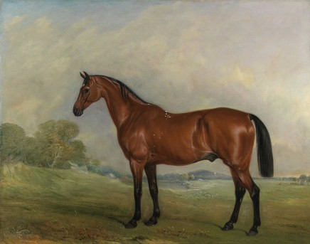 <span class=%22title%22>A bay thoroughbred in a landscape</span>