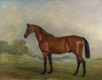 John Ferneley Senior, A bay thoroughbred in a landscape