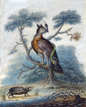 <span class=%22title%22>A bird of prey with a snake and a tortoise; A duck and a fish by a stream</span>