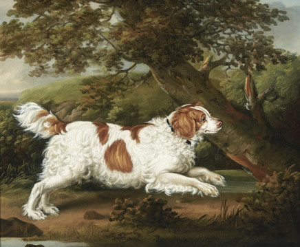 "Henry Bernard Chalon, ""Quaile"", an English spaniel in a wooded landscape"