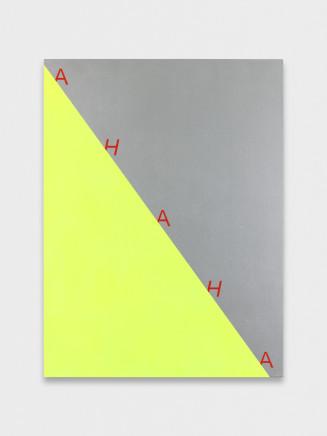 Nick Oberthaler, Untitled (AHAHA), 2018