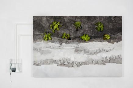 Halley Cheng 鄭哈雷, The Carnivorous Island 嚥人島, 2016