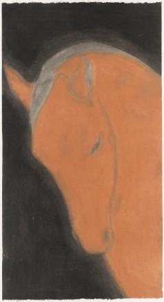 Huang Dan 黃丹, The Single Horse 獨馬, 2014