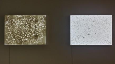 Halley Cheng 鄭哈雷, Tracing of Rain, 2014