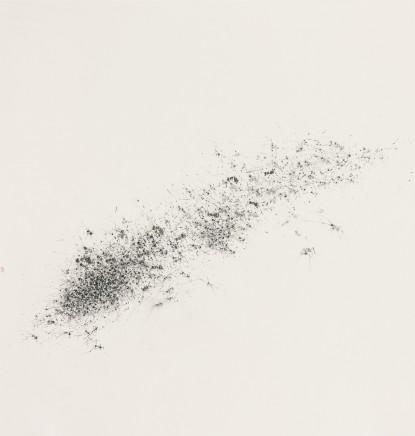 Zhang Yanzi 章燕紫, Annihilations 煙滅, 2014