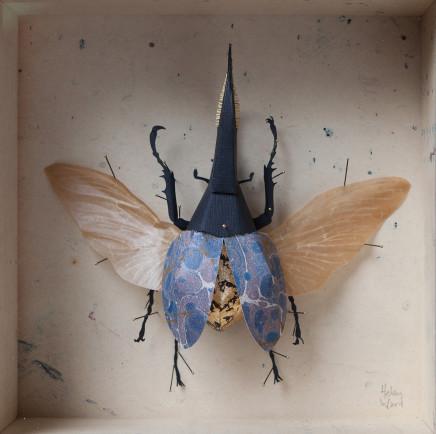 Helen Ward, Blue Hercules Beetle, 2019