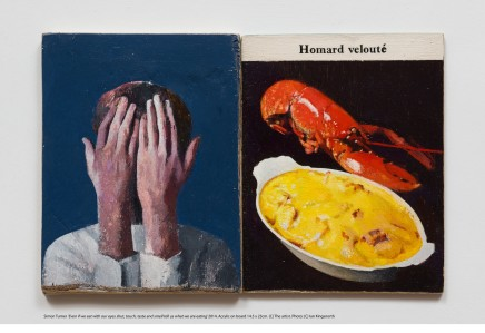 Simon Turner, Even if we eat with our eyes shut, touch, taste and smell tell us what we are eating', 2014