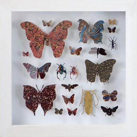 Lepidoptera 8, 2016
