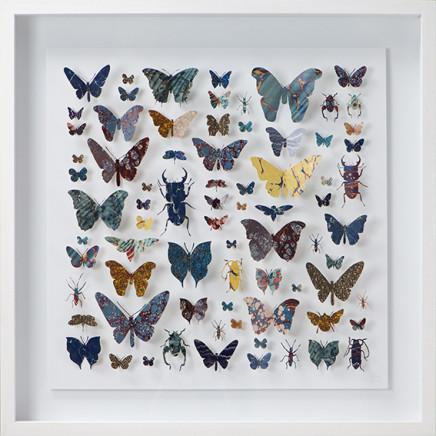 Helen Ward, Lepidoptera 3, 2016
