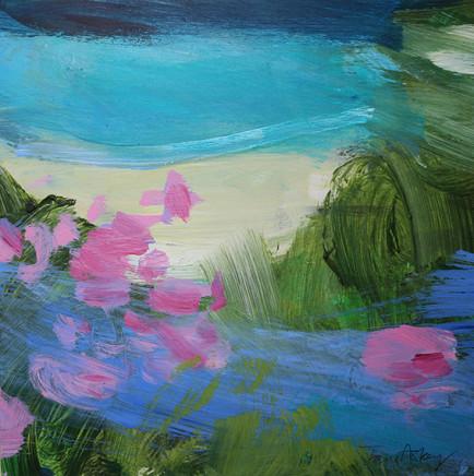 Spring Flowers Cornish Coastal Path, 2017