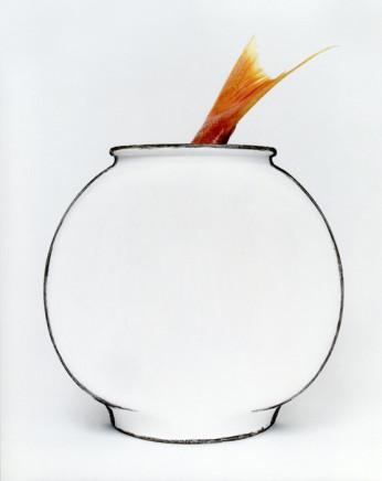 Cynthia Greig, Representation No. 27 (fishbowl), 2003