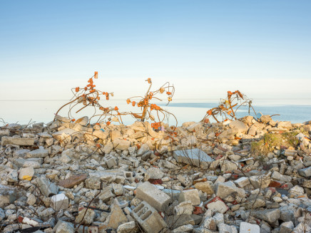 Robert Burley, Constructions of Brick and Rebar, Tommy Thompson Park, 2019
