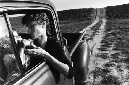 Larry Towell, The Pear, Lambton County, Ontario, Canada, 1983