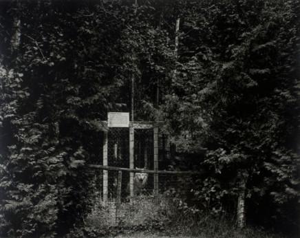 Volker Seding, Timber Wolf, Elmvale, Ontario, 1987